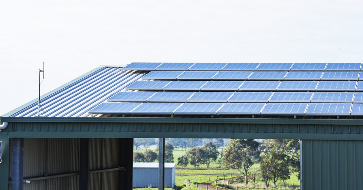 Farmers-urged-to-watch-out-for-solar-operators-after-dodgy-sales