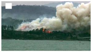 fire in australia 2020