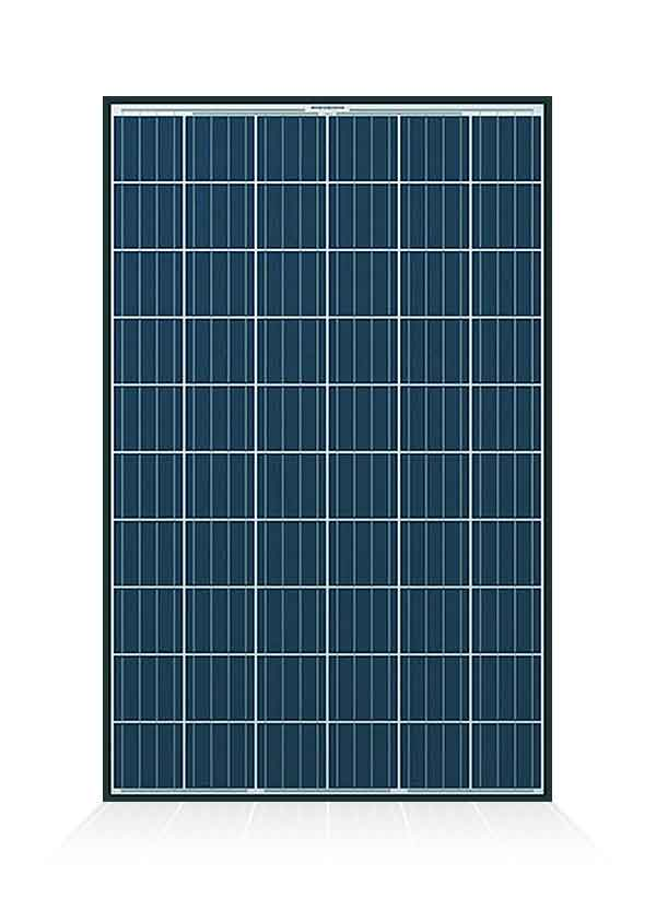 Q CELLS solar panels: the complete review