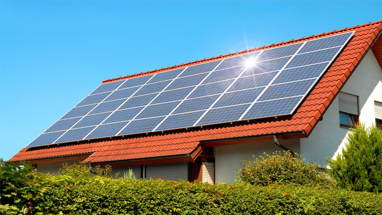 jinko-vs-qcels-solar-panels-comparison-img-2020